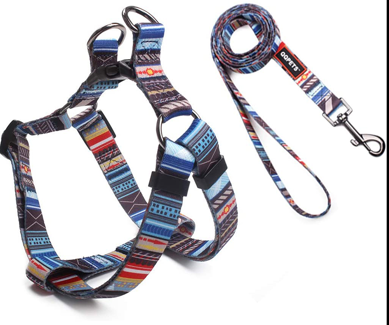 Roses & Poetry puppy harness and leash combination