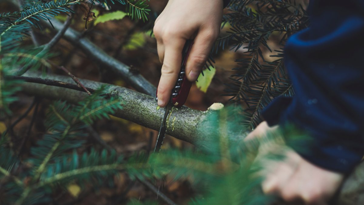 A knife is a handy tool to help cut firewood and skin animals