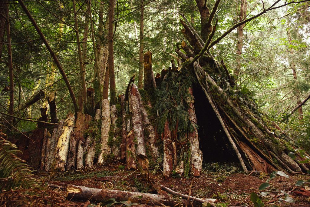 A makeshift shelter created using logs and branches
