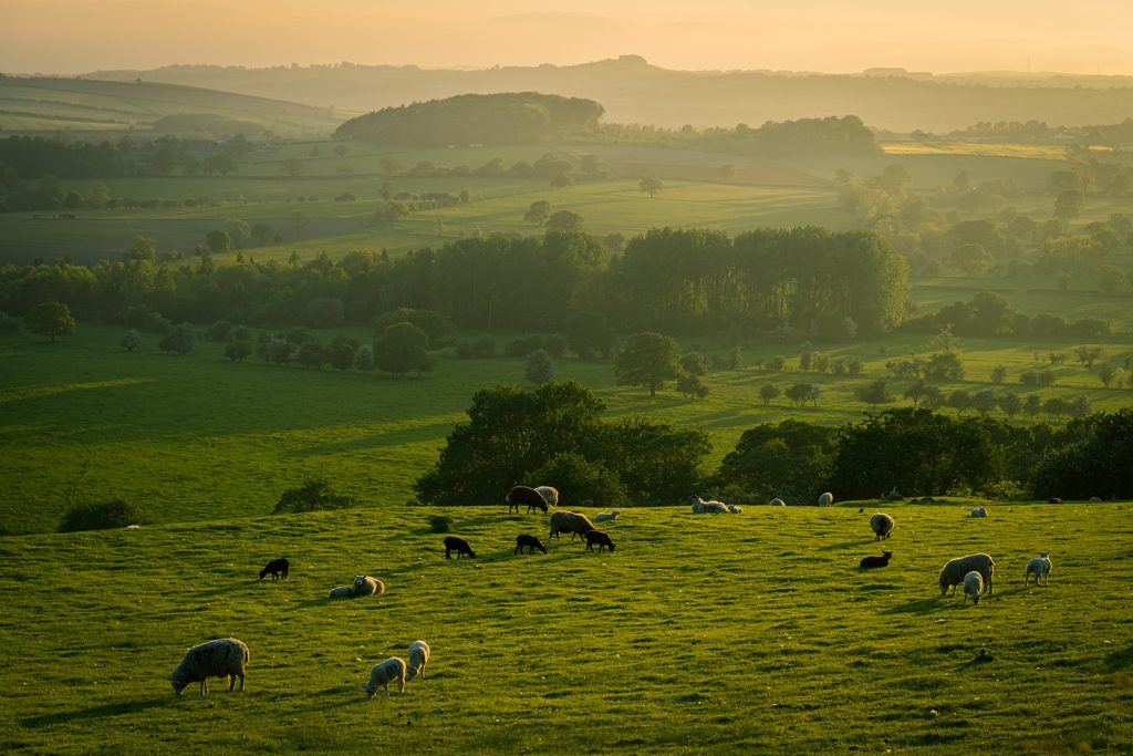 The Yorkshire dales offers incredibly scenery and landscapes