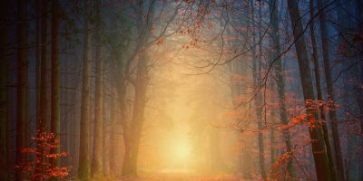 Wild Camping in Autumn – see the amazing Autumn colours